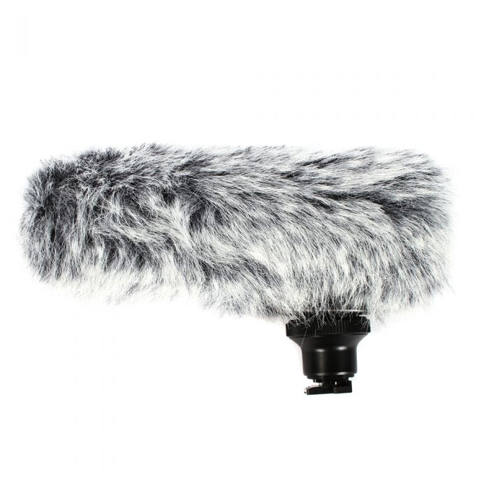Canon DM-100 Super-Directional Microphone